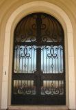 Portas da rua superiores do ferro feito do quadrado elegante do projeto
