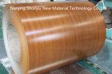 Bobina de oro del color PPGI de madera de roble de la alta calidad