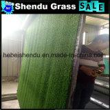 緑のカーペットの人工的な草高密度との10mm
