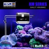 Fabrik-Preis-neue Produkte 100W PFEILER Frischwasser-LED Aquarium-Licht mit Fisch-Becken