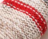 Новые повелительницы греют полные перста перчаток зимы сгущать перчатки