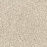 Плитки фарфора тела соли и перца полные 600*600mm
