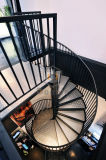 Escalier spiralé d'acier inoxydable/intérieur utilisé