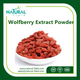 Extracto natural 100% de Goji Wolfberry / extracto de Lycium Chinense