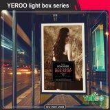 Boîte à lumière - Boîte à lumière permanent - Boîte à lumière de l'affichage de publicité