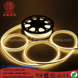 Bendable 10*20mm LED Neonflexlicht China-Suppier für Raum