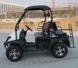 150cc / 200cc / 250cc 4 courses UTV pour adultes Sports