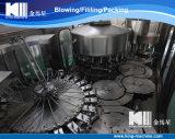 Chaîne de production remplissante meilleur marché d'usine de l'eau minérale