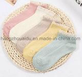Coton confortable de lacet de couleur de sucrerie chaud pour la chaussette de cheville de dames