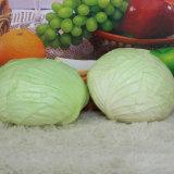 Hermoso y verde fresco y verduras Artificial PU