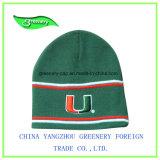 新式の刺繍のWniterの帽子のニットの帽子