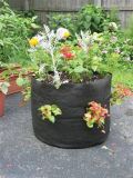 Vegetables Plantingのための低いPrice Smart Pot Flower Root Pouch Used
