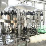 음료를 위한 시간 통조림으로 만드는 선 당 2000cans