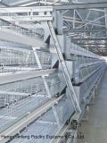 4 Tiers a Type Chicken Layer Cage