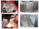 Tagliatrice del plasma di CNC di Cuting del metallo (DW1325)