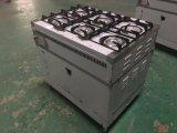 ökonomische Reichweite des Gas-6-Burner mit Gas-Ofen für Küche (HGR-6G)