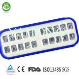 Produtos ortodônticos dentais do mini suporte ortodôntico de Roth