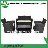 La mobilia esterna del giardino della mobilia del rattan del PE ha impostato (WXH-012)