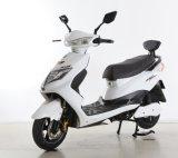 [هوت-سل] درّاجة ناريّة [سبورتي] كهربائيّة [من5]