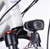 Brushless Nieuwste Elektrische Fiets van de Motor 700c met Certificaat