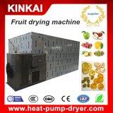 Commercieel Fruit en het Plantaardige Drogere Dehydratatietoestel van de Bes Actinidia op Verkoop