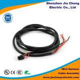 Chicote de fios de fiação feito sob encomenda do automóvel da manufatura de China