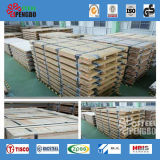 plaat de Van uitstekende kwaliteit van Roestvrij staal 304 316