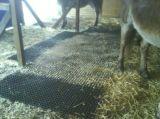 안정되어 있는 매트 말 농업 고무 매트, 암소 말 매트,