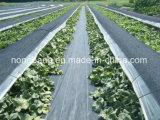 A longo prazo ambientalmente segura material controle de plantas daninhas em plástico