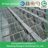 Верхний тип изготовление Китая аграрный стеклянный Venlo поставк парника