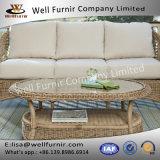 El sofá de mimbre bien de Furnir Wf-17067 fijó con la mesa de centro