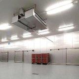Cámara fría de la buena calidad que guarda la carne/pescados/vehículos
