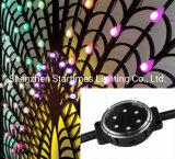 DMX Spi LEDピクセルアドレス指定可能な点のモジュールLEDは結婚式の装飾のクリスマスの装飾LED軽いLEDの照明モジュールをつける