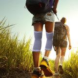 De Steun van de Koker van de Compressie van de knie voor het Lopen, het Aanstoten, Sporten