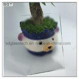 4mm 5mm ultra Duidelijk Anti-Reflection Starphire Glas voor Serre