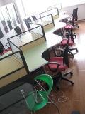 OEM profesional distintos de la partición de moderno diseño Desk (DPF-04)