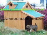 Chambre de chien (QZD8066)