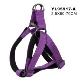 China Fornecedores Chicotes Pet Dog Chicote (YL95917-A)