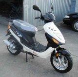 Motorino (JL50QT-5)