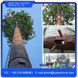 Camuflado galvanizado Pino Tower torre de acero de telecomunicaciones