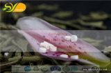 Heißer Verkauf SoemStevia Tablets Fabrik-Zubehör-Tisch-OberseiteStevia
