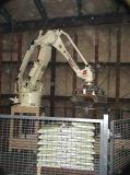 Automatische Robot Palletizer
