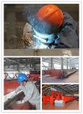 Grúa de pórtico de Grider del doble del gancho agarrador de 1 tonelada con la ISO