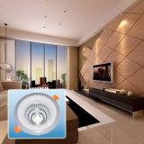 LED-Scheinwerfer/heißer Verkaufs-doppeltes Licht PFEILER rundes Licht