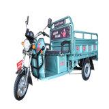 Grande carico che carica il triciclo elettrico Trike del carico con il freno a tamburo
