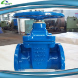 Tuyaux en fer ductile / Spigot Ductile Iron Pipes for Water