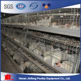 Baugerät-Huhn-Rahmen-Viehwirtschaft-Gerät