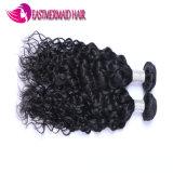 I capelli ricci dell'onda dei capelli umani di 100% impacchettano i capelli di Non-Remy