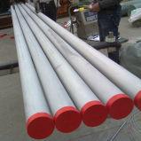 Tubulação de aço niquelar C276/barra/placa/fio (N02201)