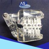 als Ausrüstungs-orthodontischer Selbst, der Halter mit Cer FDA ISO13485 verbindet